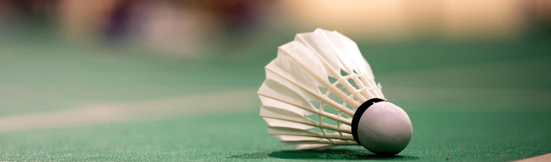 Badminton Data Coverage